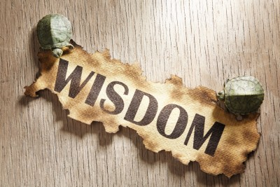 "wisdom the knowledge of many things Knowledge wisdom quotes ""the process may seem strange and yet it is very true i did not so much gain the knowledge of things by the words."